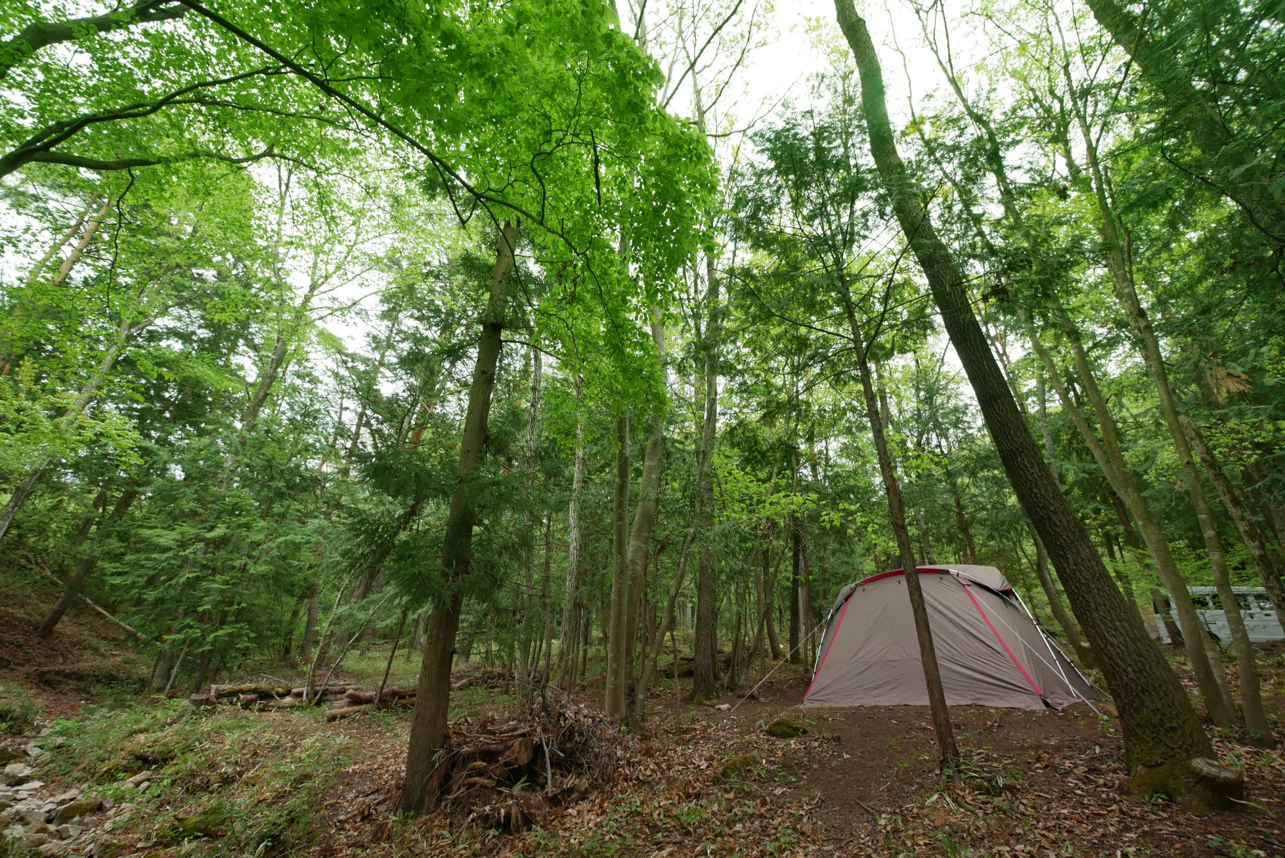 プライベートキャンプ場づくりのきっかけ