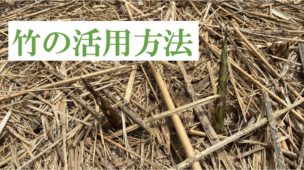 開拓コラム 竹の活用方法